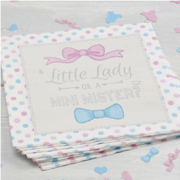 Little Lady or a Mini Mister? Pack of 20 paper napkins